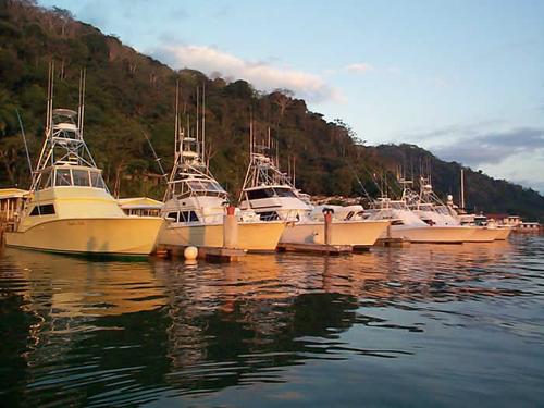Banana Bay Marina1