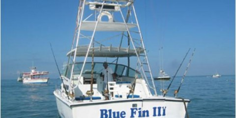 Bluefin Sportfishing Charters and Tours