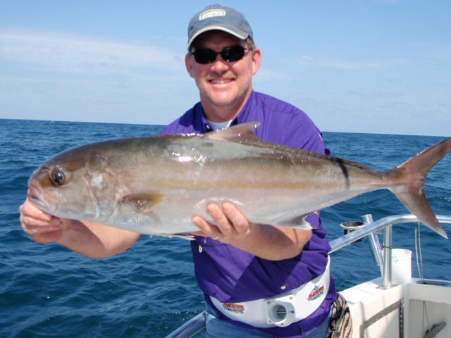 Amberjack Fish | Amberjack In Costa Rica Sportfishing Costa Rica Fishing Quepos