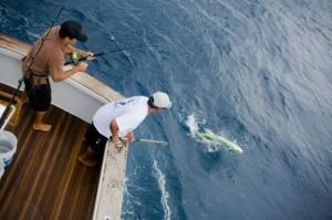 Cocozuma Sportfishing1