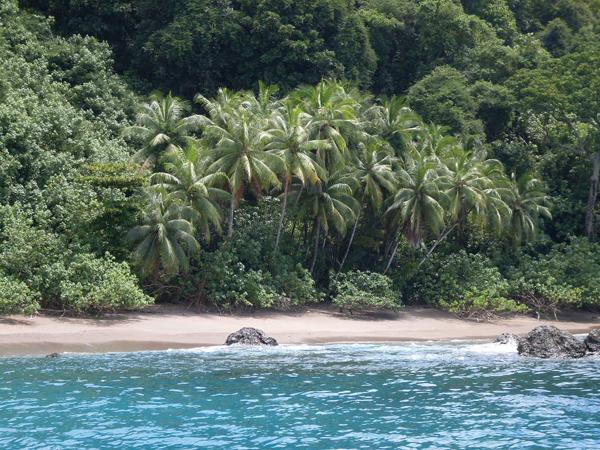 Puerto Jimenez – Sportfishing Adventures