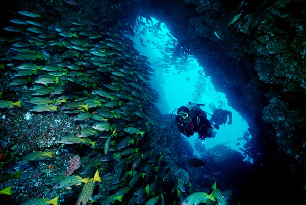 Scuba Diving in Costa Rica