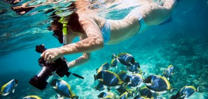 Snorkeling in Costa Rica2