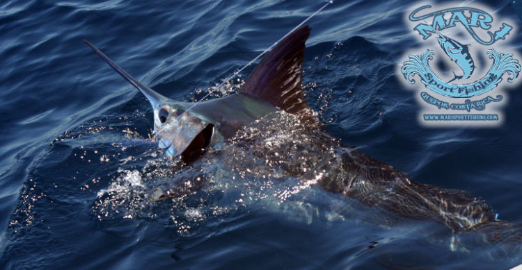 Fishing Charters Costa Rica 1