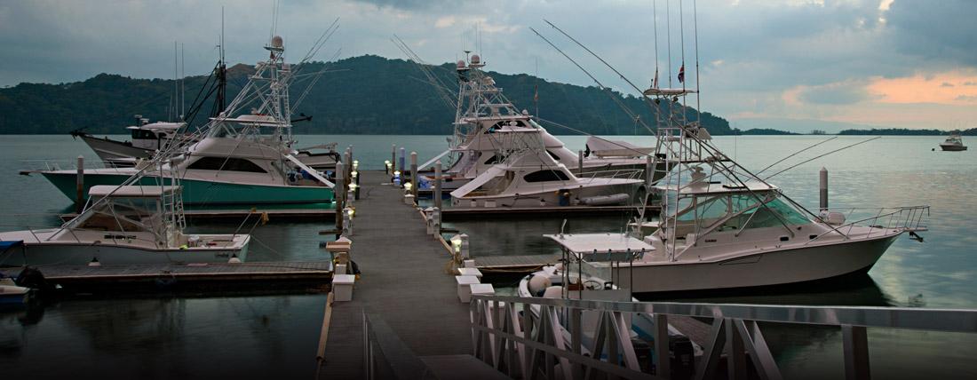 Fish Hook Marina and Lodges