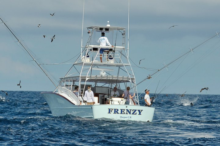 Frenzy Sportfishing