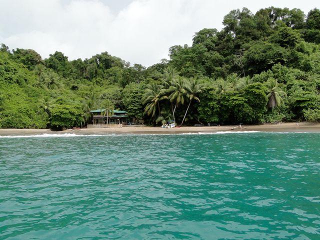 Activities in Isla del Caño