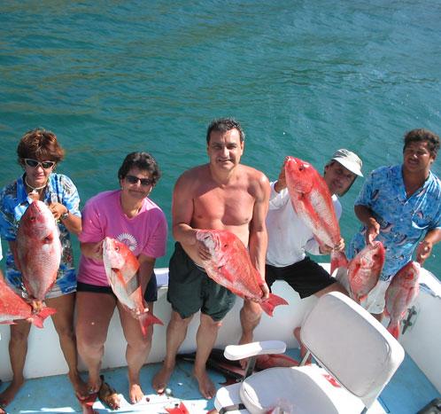 Yellowfin Sportfishing Charters