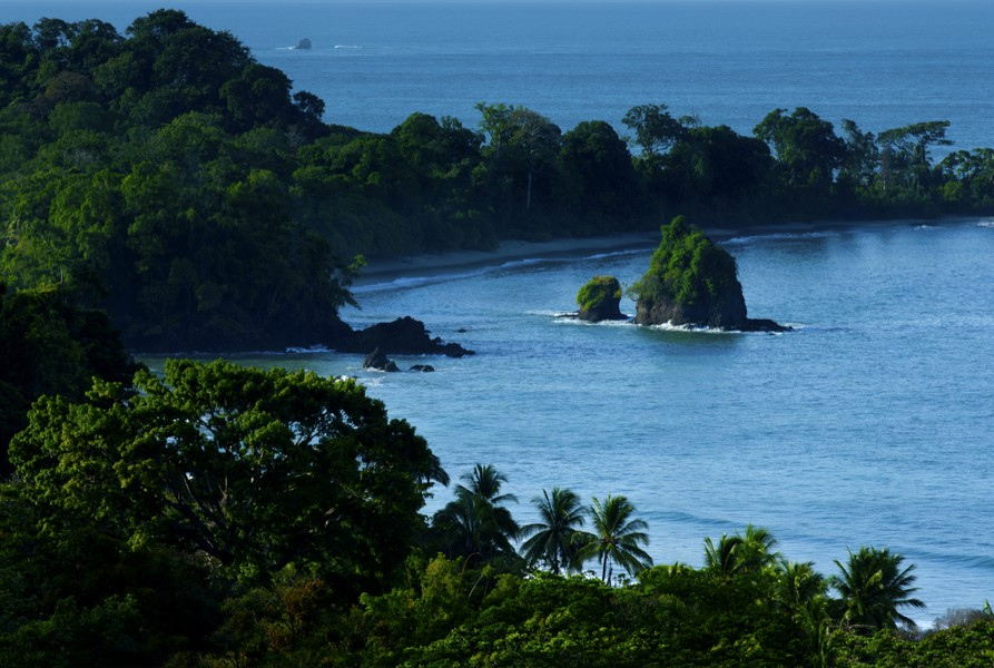 Sportfishing in Manuel Antonio National Park