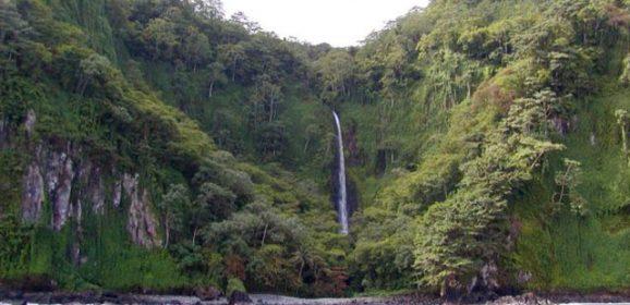 Cocos Island Costa Rica